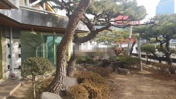 Single House in Yeoksam-dong, Korea